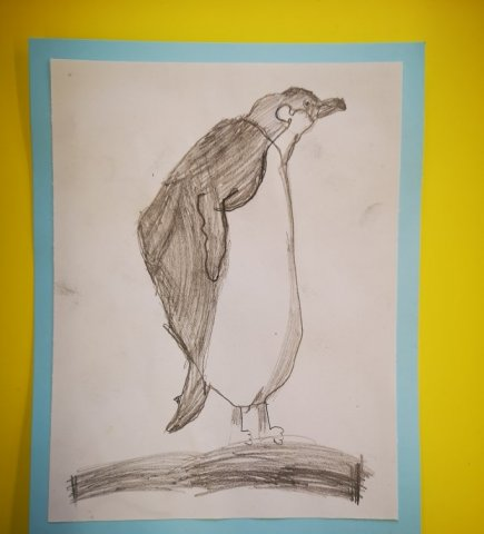 Yr 2 penguin art work